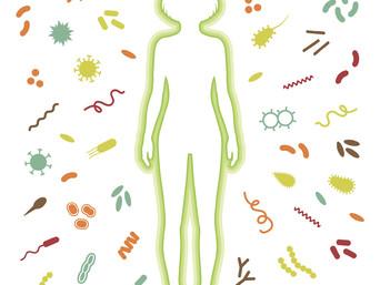 microbiotafullbody-2.jpg