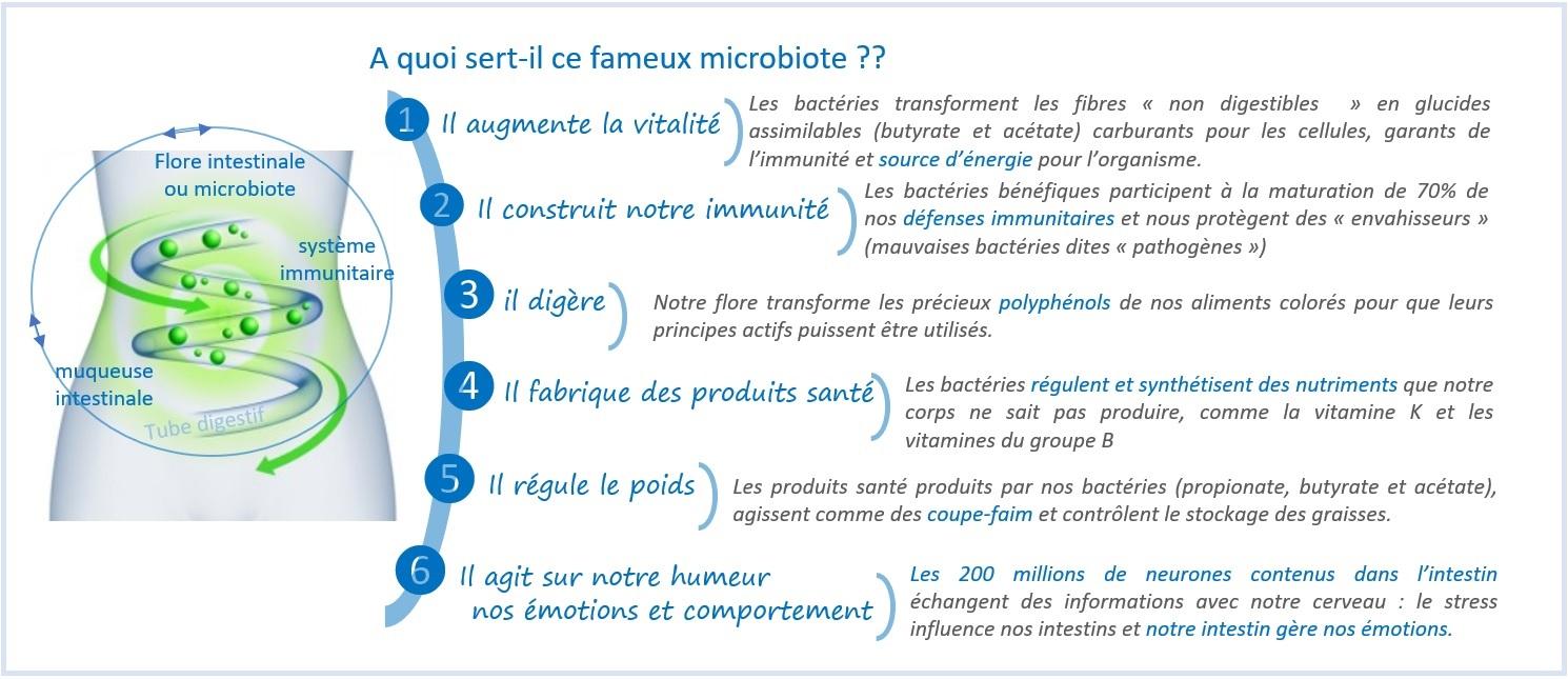 ROLES MICROBITOE